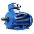Электродвигатель АИМЛ 80 А2