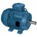 Электродвигатель АИМЛ 100L6