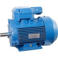 Электродвигатель 4ВР 132 S4