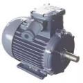 Электродвигатель АИММ 200L6