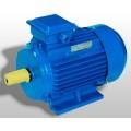 Крановый электродвигатель 4MTM 200 LB 8